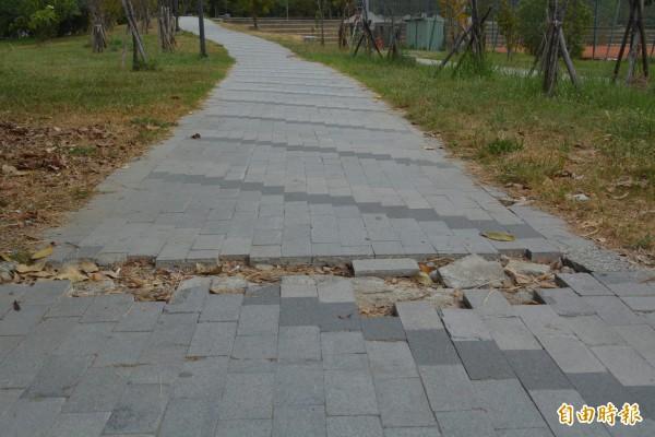 太平祥順運動公園步道地磚多處破損,民眾抱怨遲未修復。(記者陳建志攝)