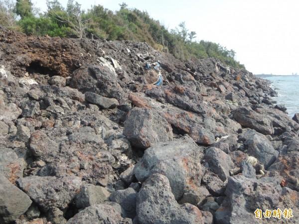 新豐鄉親要求政府不要再拖延,儘快協助清除海岸廢棄物。(記者廖雪茹攝)