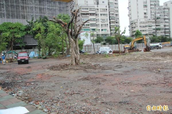 當地里、日祥里長鍾駿表示,這些樹木生長環境不好,認為如果要保護樹木就應該安置到更好生長的地方。(記者鍾泓良攝)