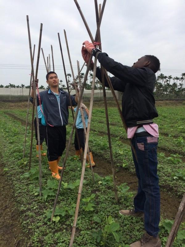 在肯亞,許多學童迫切的問題就是食物,Jayson還來台學習農業。(記者陳彥廷翻攝)