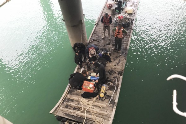 承包商請來3名專業潛水伕,協助搜尋落水陳男。(記者吳俊鋒翻攝)