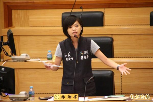 嘉義縣議員林緗亭認為台灣燈會攤位租金太高。(記者林宜樟攝)
