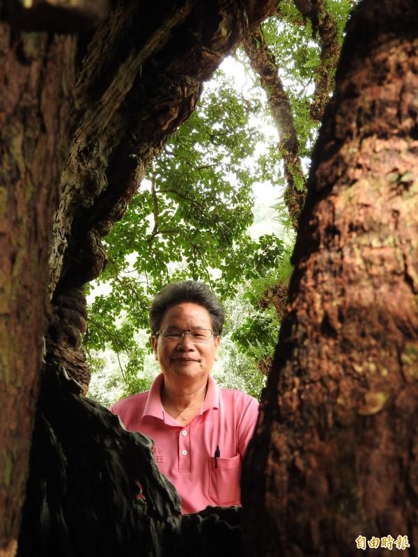 遊客喜歡在樹洞前拍下「人在台灣、心在台灣」的照片,也成為熱門拍照打卡景點。(記者佟振國攝)