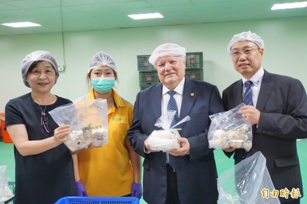 尼加拉瓜駐台大使達比亞參與杏鮑菇分級包裝。(記者詹士弘攝)