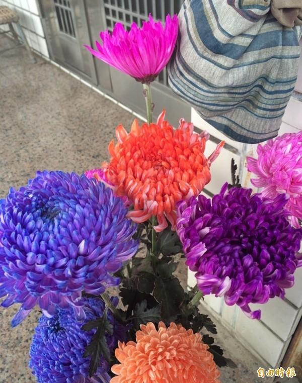 染菊顏色相當多種,市場各取所需。(記者陳冠備攝)