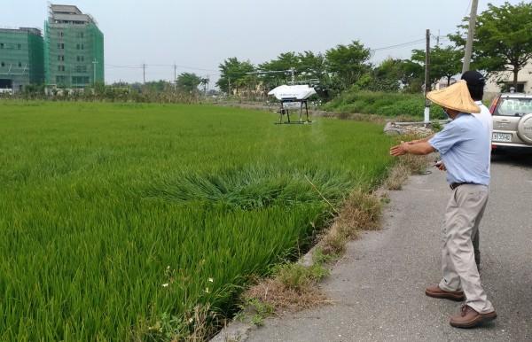 明道大學測試雲端監控系統,並在水稻田進行無人機試飛作業。(明道大學提供)