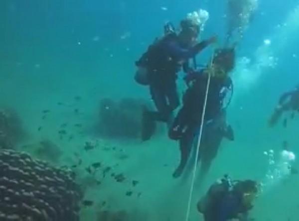潛水業者在珊瑚上綁繩子,供潛客拉扯被罵翻。(記者蔡宗憲翻攝)