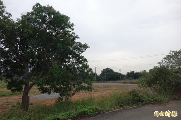 八卦山上的民族新村眷村已遷移拆除,原址將改造為共融式遊戲公園。(記者劉曉欣攝)