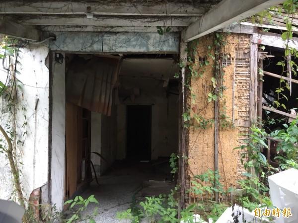 東門街日式宿舍老舊無人居住,急待活化使用。(記者謝武雄攝)