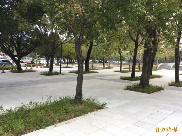 新竹市文化局周邊的文化綠廊環境景觀工程即將完工,是串聯4公里新竹之森的重要綠廊。(記者洪美秀攝)