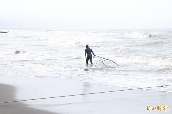 漁民忍受著海水低溫下海捕撈鰻苗。(記者林敬倫攝)