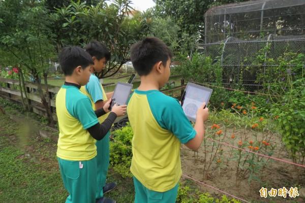 用平板看AR,台中西屯國小讓學習趕上時代。(記者蘇孟娟攝)