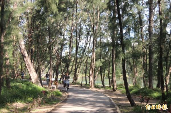 台東森林公園今年元旦起收取入園費,收入已破千萬元。(記者張存薇攝)