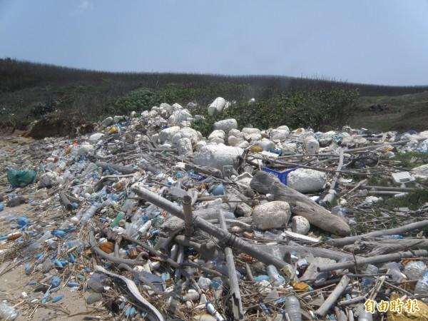 澎湖迎風面沙灘處處可見海洋廢棄物,成為加速海龜族群滅絕的殺手。(記者劉禹慶攝)