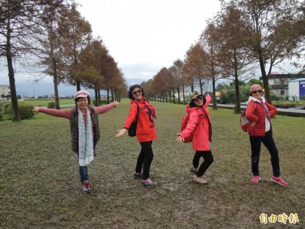 三星鄉安農溪落羽松秘境,成為遊客拍照熱點。(記者江志雄攝)