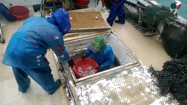 澎湖打擊非法漁撈再傳捷報,查獲疑似電魚漁船。(記者劉禹慶翻攝)