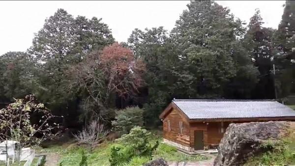阿里山今天上午10點左右降下今年第一場雪。(氣象局提供)