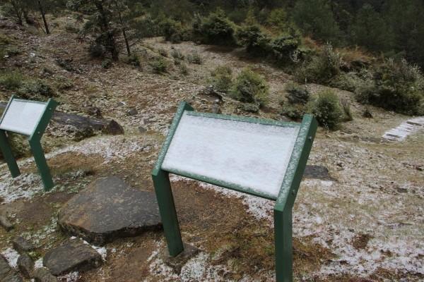 寒流發威,玉山塔塔加園區下起冰霰,步道設施都能看見殘留的冰霰。(玉管處提供)