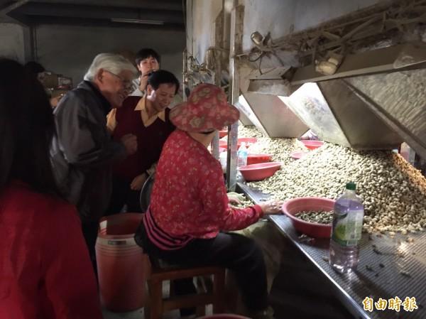 雲林縣長李進勇參觀雜糧產銷班,了解外銷情形。(記者廖淑玲攝)