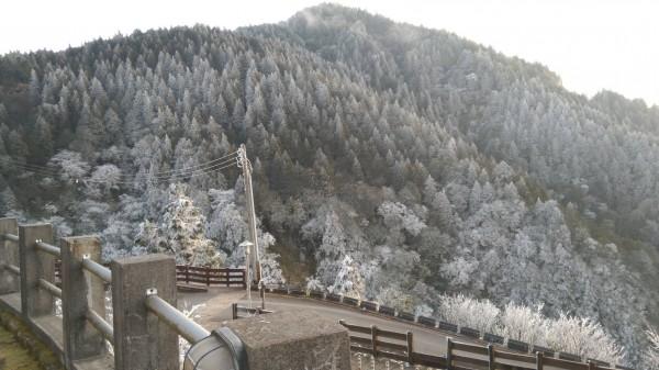 太平山山頭變白。(記者江志雄翻攝)