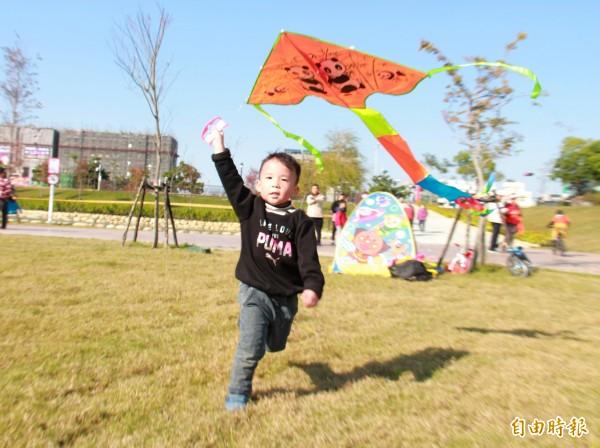 圓林園有近萬坪草地,成為小孩放風箏最佳場所。(記者陳冠備攝)