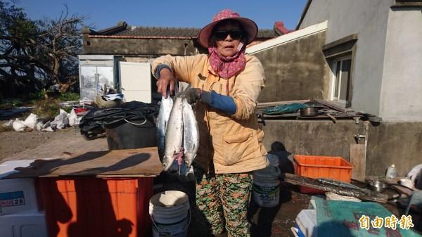 漁婦展示凍死發臭的虱目魚,損失慘重。(記者楊金城攝)