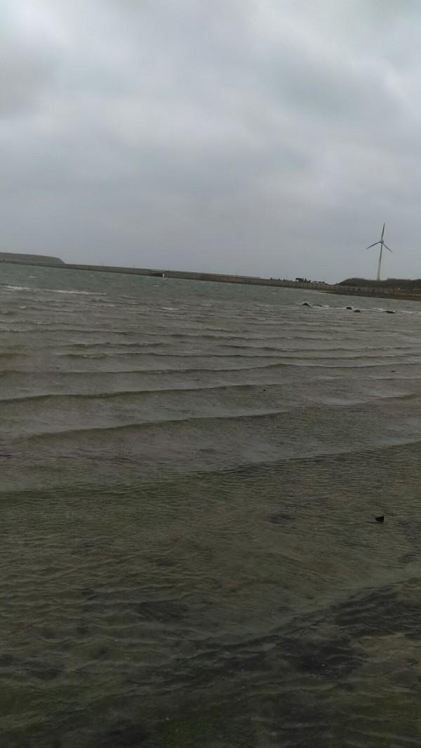 澎湖海洋生物研究中心針對海水溫度,已發出低溫通報,呼籲養殖業者注意寒害。(陳憬賢提供)