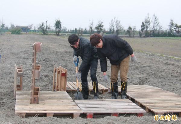 亞洲大學學生頂著寒流,在農田打造出大型裝置藝術景點。(記者陳冠備攝)