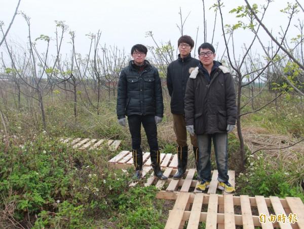 亞洲大學學生鄭博嶸、黃勝傑、黃彌祐(左至右)利用寒假到台西村進行「看見台西村」裝置藝術活動。(記者陳冠備攝)