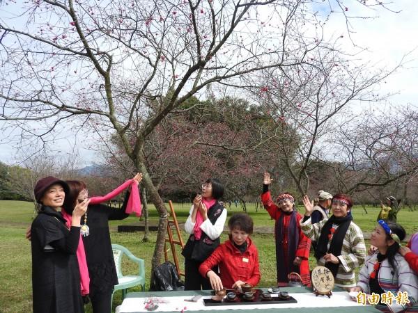 日月潭暨大櫻花季結合茶道、風味野餐等多元方式,讓賞櫻更有趣。(記者佟振國攝)