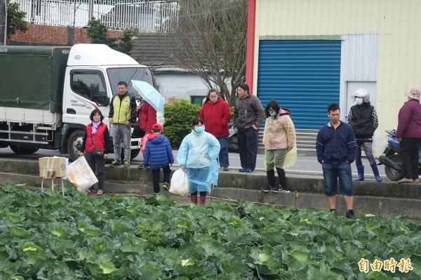 民眾自備工具,準備來搶買高麗菜。(記者劉曉欣攝)
