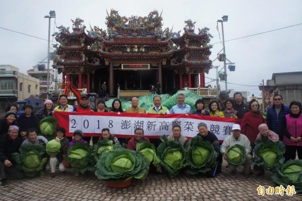 澎湖新高麗菜王競賽,在馬公烏崁社區舉行。(記者劉禹慶攝)