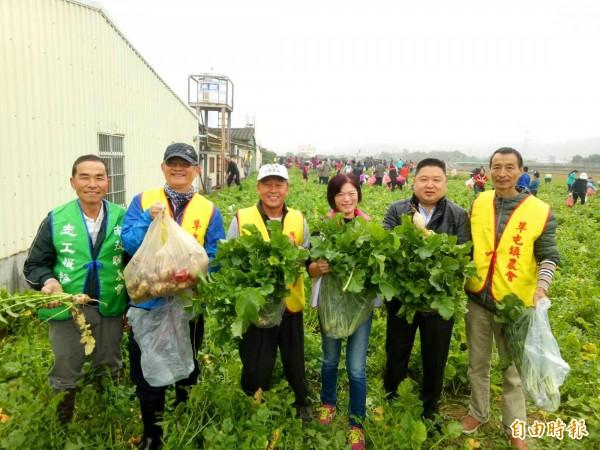 草屯鎮農會理事長陳文忠(右二)等人,也加入拔菜頭行列。(記者陳鳳麗攝)