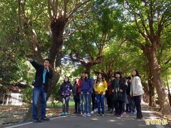 虎尾糖廠人員為雲林家扶社工導覽虎尾最美的糖廠林蔭大道。(記者廖淑玲攝)