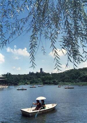 澄清湖風景區停用近20年的划船場,也將招商委外經營。(記者陳文嬋翻攝)