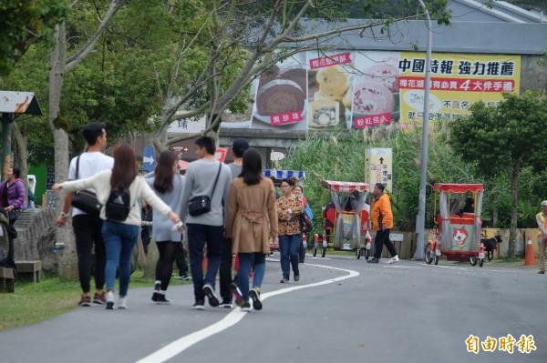 梅花湖風景區今年春節連假已有近3萬旅遊人次。(記者林敬倫攝)