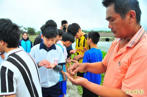 徐明堂把罕見的野生菰米發芽後,分給鳳林國中學生下田播種。(記者花孟璟攝)