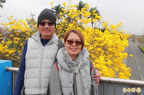 民眾被黃花美景吸引,爬上天橋拍照留影。(記者陳冠備攝)