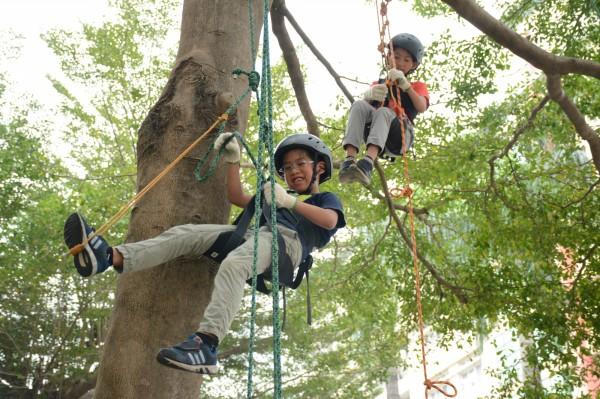 攀樹讓小朋友從不同視角與大自然接觸。(屏東縣文化處提供)