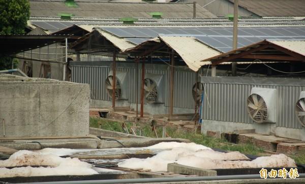 屏東縣政府推動「畜牧糞尿沼渣沼液肥分再利用計畫」,畜牧業者與農友意願有明顯落差。(記者李立法攝)