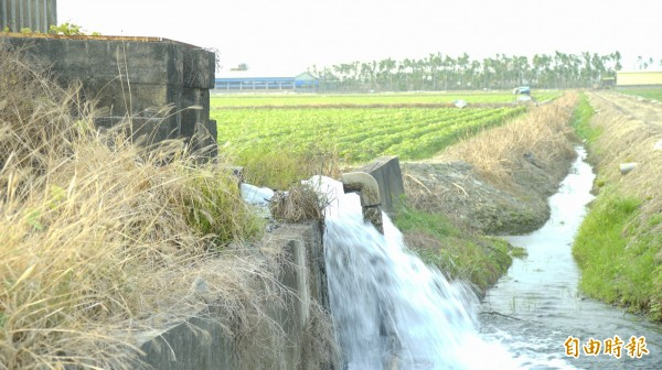 台糖深水井預計施作淨水廠。(記者陳彥廷攝)