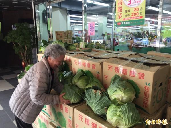 民眾開心選購物美價廉的高麗菜。(記者張存薇攝)