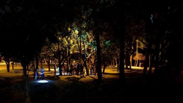 除了表演及市集外,民眾也可夜遊巴克禮公園,探索生態。(荒野保護協會提供)