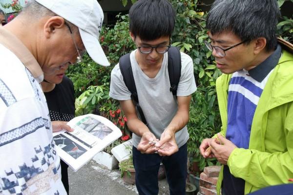 除蜥志工在花蓮市碧雲莊社區了解外來種沙氏變色蜥的分布狀況。(圖由花蓮林管處提供)