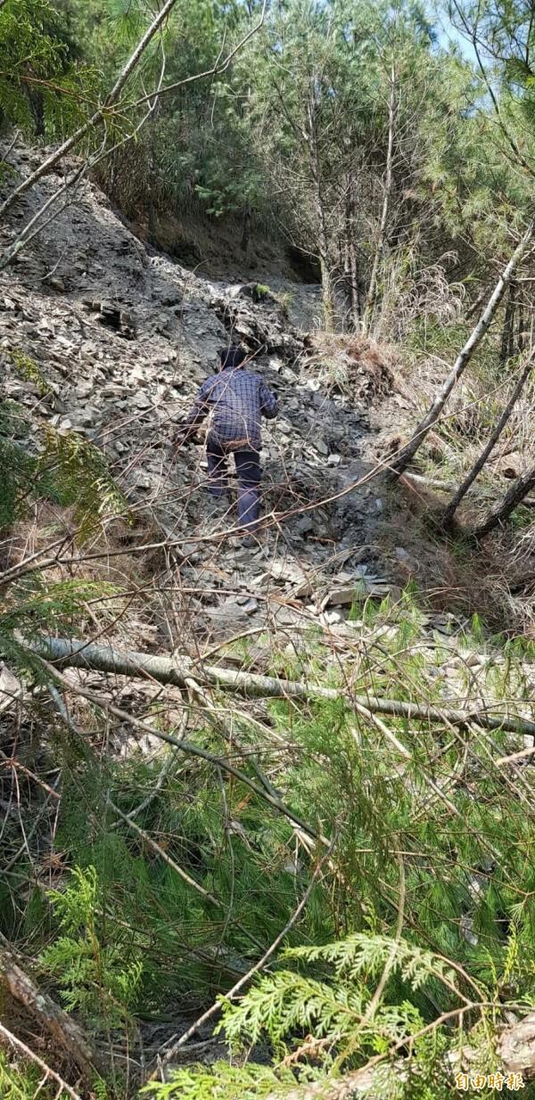 能高越嶺道昨天還有約30名登山客在山上,今天已陸續平安下山。(圖:林務局南投林管處提供)