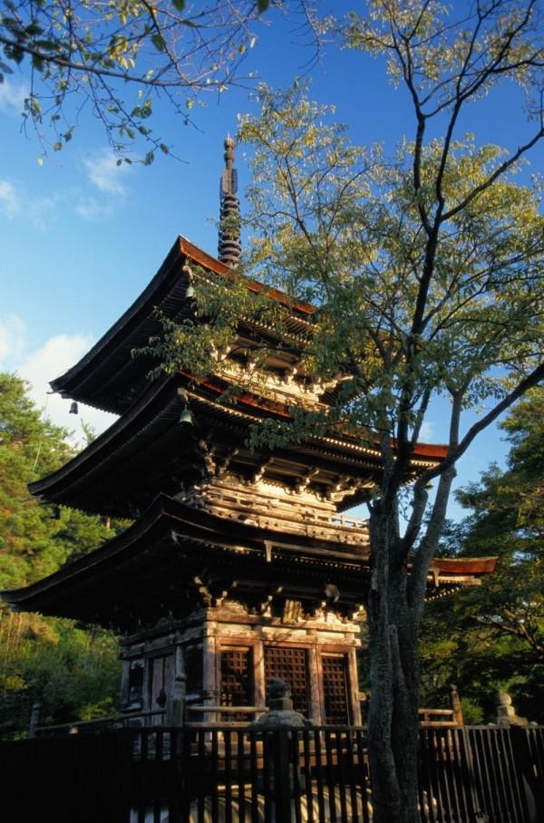 國人熱愛旅遊城市前9名都在亞洲地區。(業者提供)