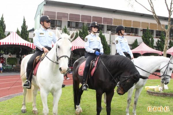 新北市騎警隊派出六批駿馬,參加成福國小校慶。(記者邱書昱攝)