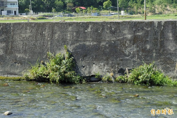 外埔區電火溪堤防堤腳隨處可見裂縫。(記者張軒哲攝)