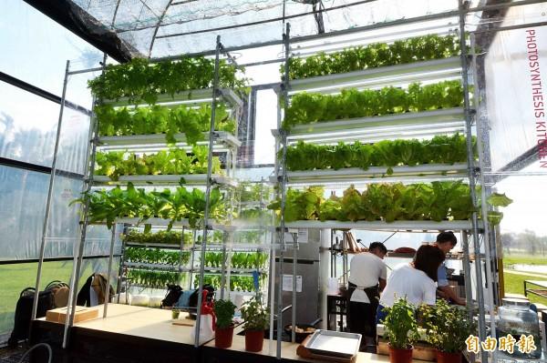 綠意盎然!桃園農博「鼓勵好室」打造未來植物住宅。(記者李容萍攝)