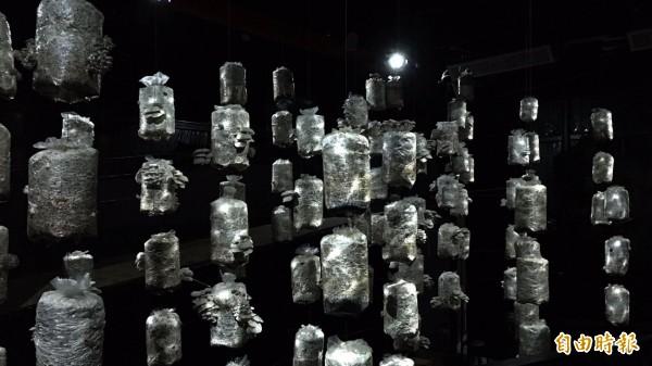 農博「鼓勵好室」的菇類光雕秀,每5分鐘展演一次。(記者李容萍攝)